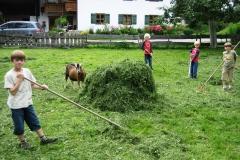 Heuen-im-eigenen-Garten-Scholz